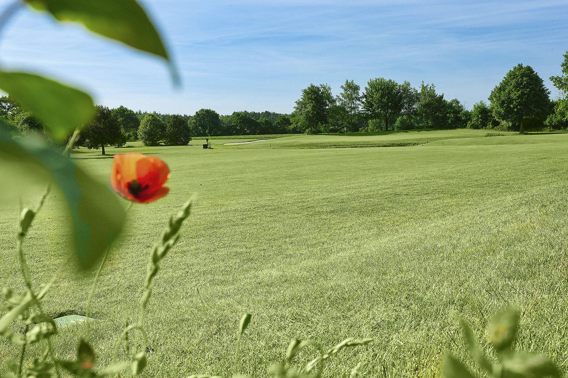 Bahn-C5-golf-anlage